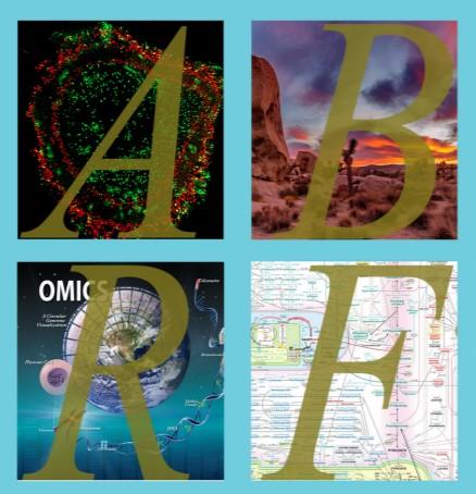 ABRF-2020-logo