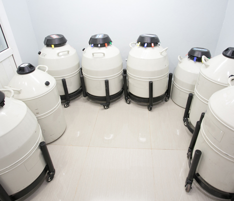 fertility clinic repository that is being temperature monitored